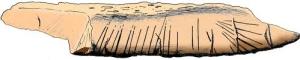 Bilzingsleben bone