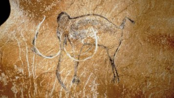 chauvet sacristy mammoth